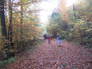 2016_10_27 Planinski pohod Sleme 006-m